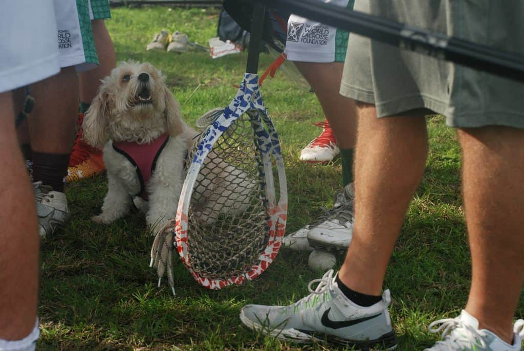 World Lacrosse mascot